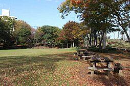 並木公園は隣接