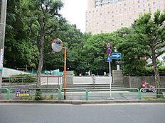 周辺環境:錦華公園