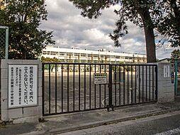 西東京市立田無...