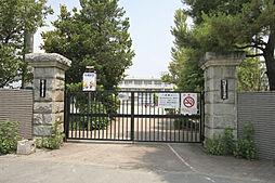 国府津小学校