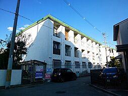 藤井寺大発マンション[321号室号室]の外観