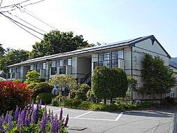 月江寺駅 6.6万円