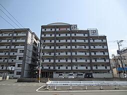 第3元木ビル[8階]の外観