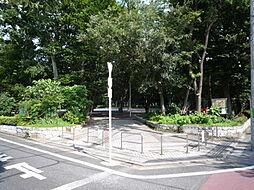 大泉公園徒歩4...