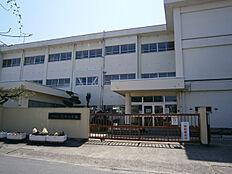 辰市小学校