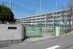 鶴川第一小学校...