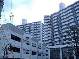 堺市中区楢葉