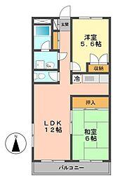 東京都江戸川区東小岩1丁目の賃貸マンションの間取り