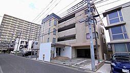 Comodo Stanza (コモド・スタンザ)