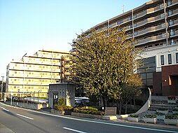 コスモ東松山B棟