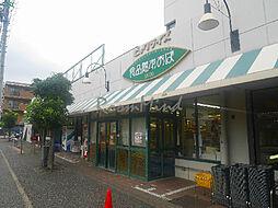 神奈川県横浜市南区別所1丁目の賃貸マンションの外観