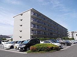 恒陽藤沢マンションA棟