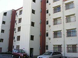 上野ビル[3階]の外観
