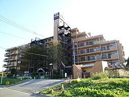 ダイアパレス昭島2 4階