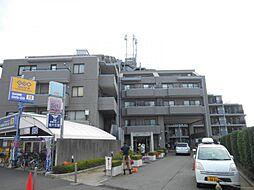 グローリア初穂薬円台ステーション