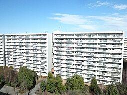 昭島つつじが丘ハイツ北 21号棟5階部分