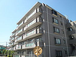 グレイスハイツ5[5階]の外観