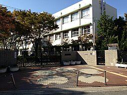 成文小学校