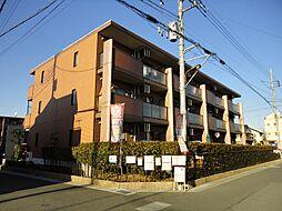 埼玉県草加市青柳6丁目の賃貸マンションの間取り