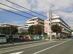 北里大学東病院