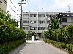 田井小学校