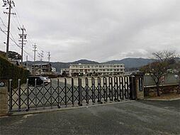 蒲郡市立塩津小学校(625m)
