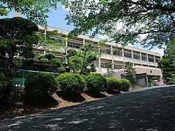 畝傍中学校