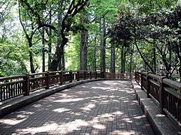 羅漢寺川緑道 ...