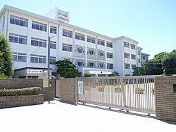 荒川小学校