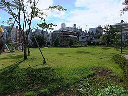 公園富久さくら...