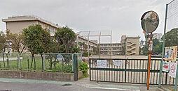 酒匂小学校