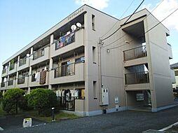 神奈川県海老名市河原口3丁目の賃貸マンションの外観