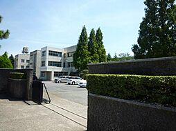 千代田中学校 ...