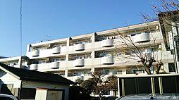 埼玉県蓮田市東6丁目の賃貸マンションの外観