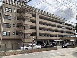 ハウベストマンション帯山五番館 6階