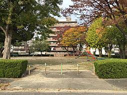 寺山公園 徒歩...