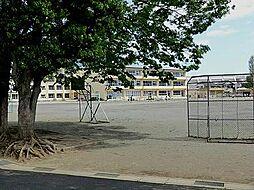 坂戸小学校 5...