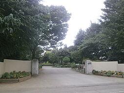 中学校藤沢中学...