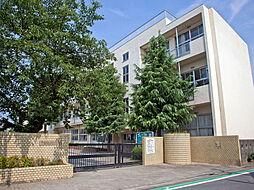 仙波小学校