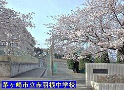 小和田小学校