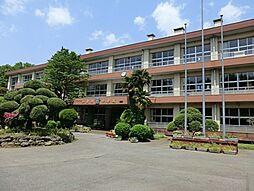 加曽利中学校 ...