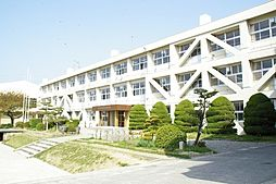 府中小学校