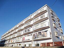 埼玉県さいたま市南区四谷3丁目の賃貸マンションの外観