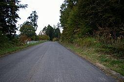物件近くの道路