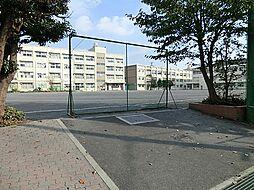 中学校戸塚中学...