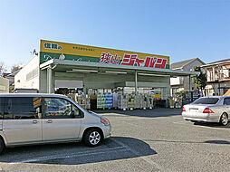 ジャパン狭山店...