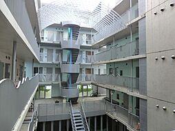 コナビレッジ[5階]の外観