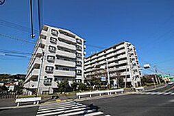 コスモ湘南野比海岸