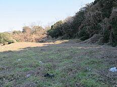 赤土と石灰を混ぜた土壌。