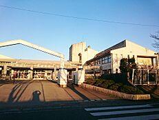 小学校那珂市立菅谷東小学校まで243m
